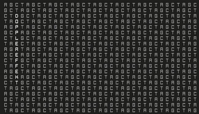 dopplereffekt-Tetrahymena-stream-9.22.2013